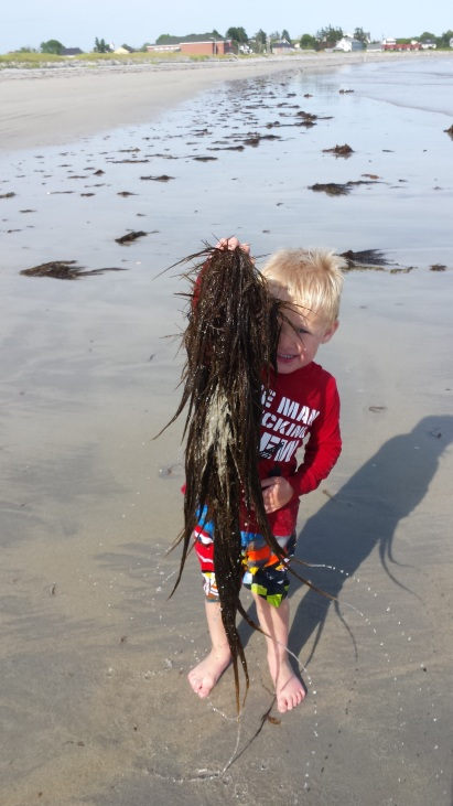 Look mom! My very own seaweed