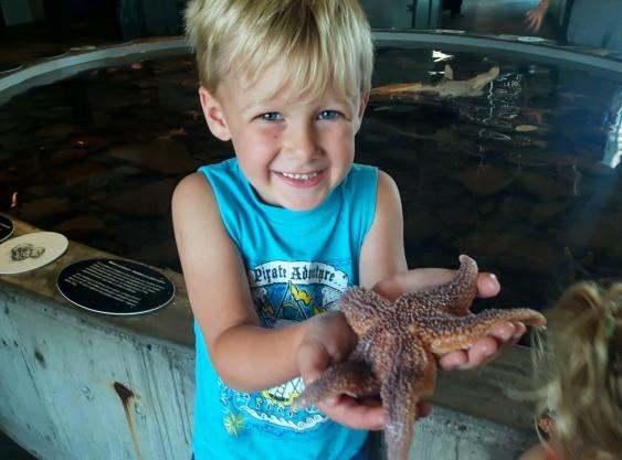 Starfish YAY!