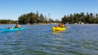 sm paddle up